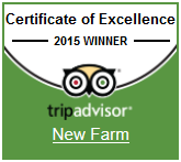 New Farm - Trip Advisor
